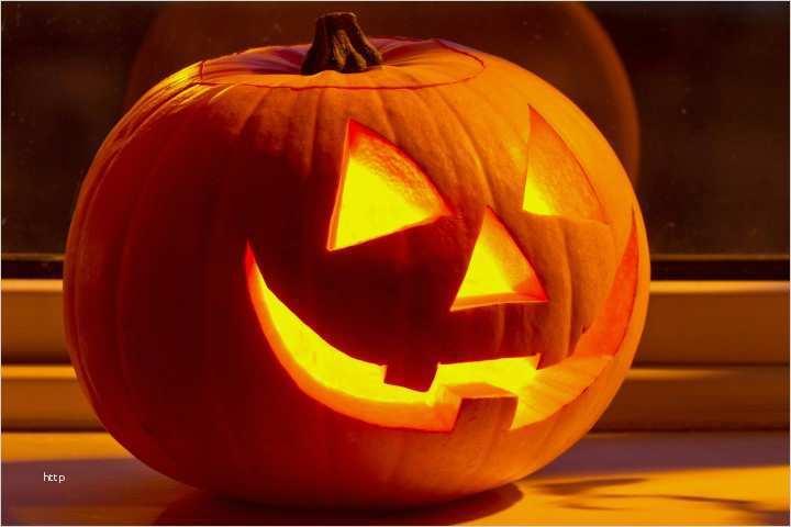 halloween kürbis gesichter vorlagen erstaunlich halloween